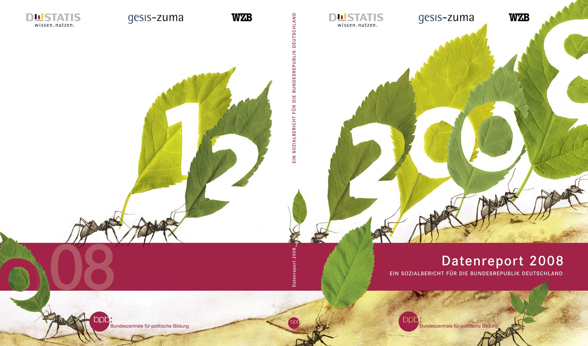 Datenreport 2008 - Konzept und Umsetzung