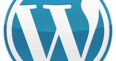 Wordpress Pro & Contra