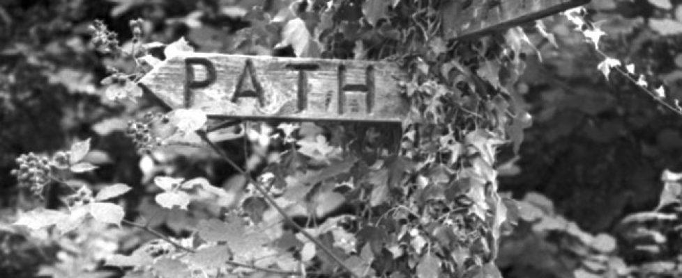 Hidden Path to Nowhere at Dartmoor